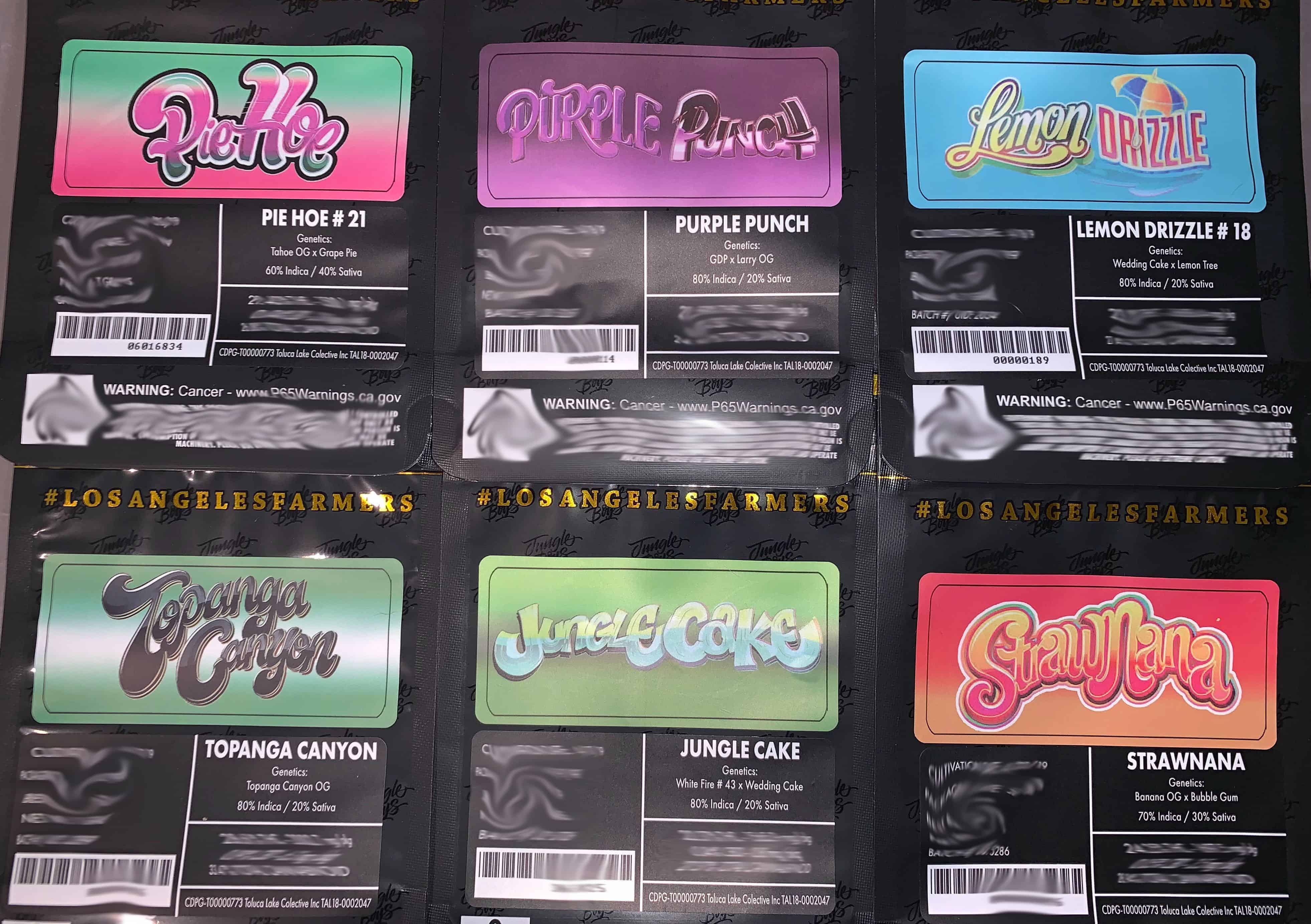 Jungle Boys 7g 1/4th Labels/Stickers